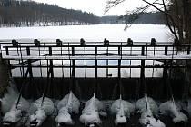 Konopišťský rybník letos možná znovu zamrzne. Vypouštět se totiž nebude.