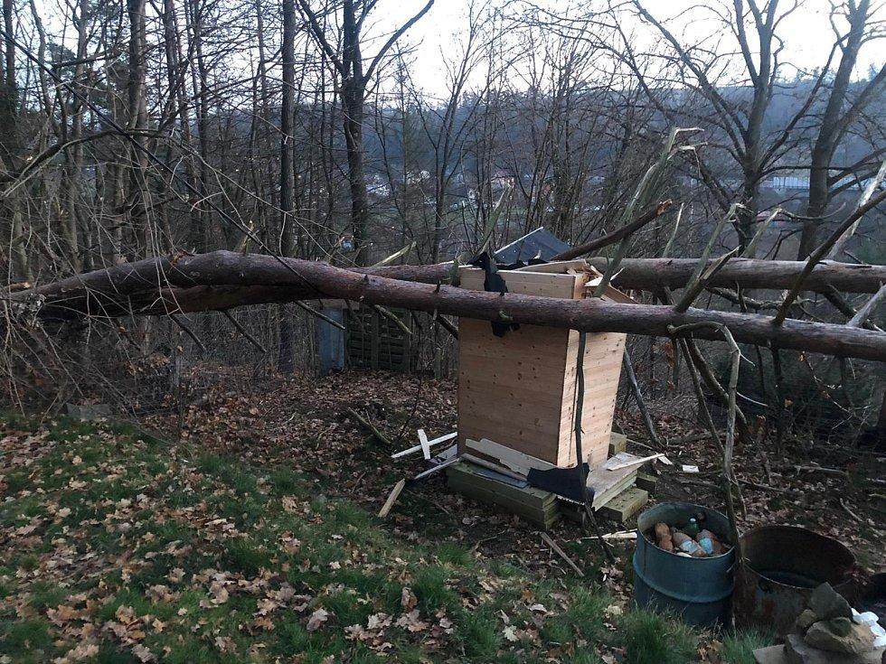 Strom spadlý na latrínu.