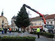 Transport a instalace vánočního stromu na Masarykovo náměstí.