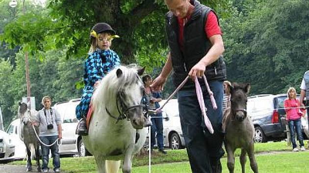 První výstava poníků, kterou připravil Český svaz chovatelů mini horses se konala v bezprostřední blízkosti konopišťského parkoviště.