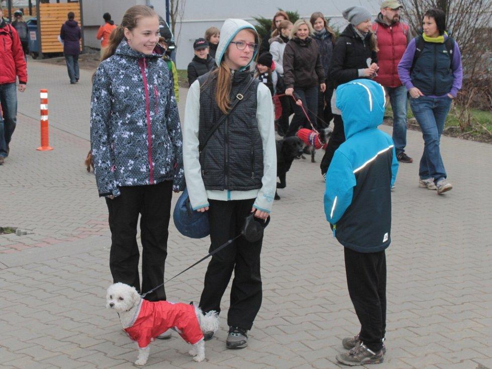 Příznivce dálkových pochodů neodradilo ani chladné počasí.
