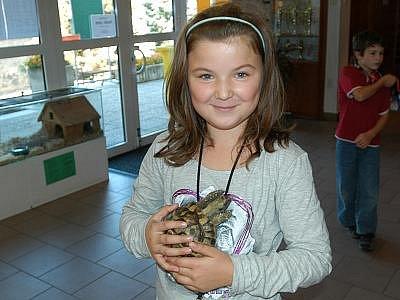 Sameček želvy čtyřprsté byl miláčkem snad každého návštěvníka.