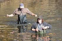 Výlov rybníku Doleček v Trhovém Štěpánově provázelo sice hezké počasí, ale i čtyřhodinové zpoždění.