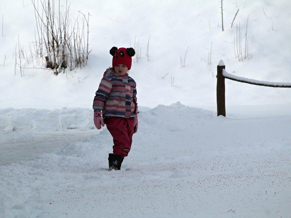 Benešovsko v pondělí 8. února 2021 po vydatném nočním sněžení.