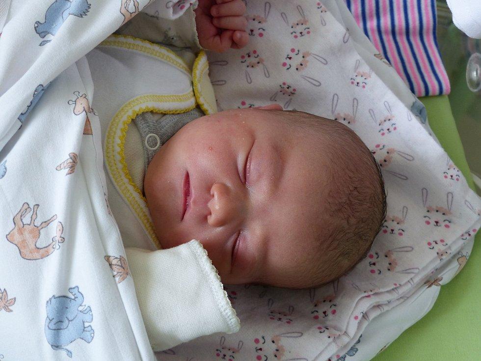 Viktorie Štěpařová se narodila 28. března 2021 v kolínské porodnici, vážila 3475 g a měřila 50 cm. V Radimi se z ní těší bráška Oliver  (2) a rodiče Michaela a Jaroslav.