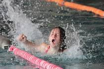 Okresní kolo čtrnáctého ročníku plavecko - běžeckého poháru Středočeského kraje se konal v Benešově ve středu 15. dubna.