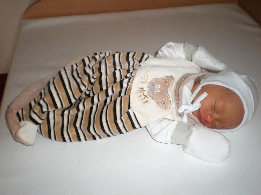 Marek se narodil 16. prosince před pátou hodinou ráno Daniele a Luďkovi Viltovým ze Stranného. Po porodu vážil 2,5 kg a měřil 46 cm.