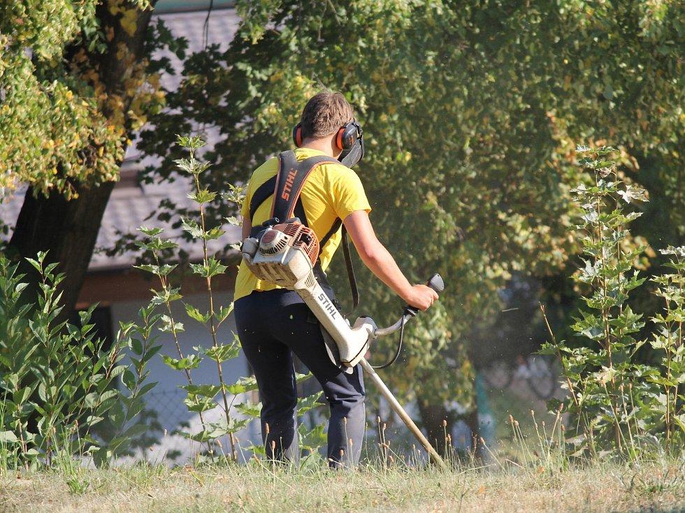 Pracovníci technických služeb sekali trávník a upravovali keře v Týnci nad Sázavou a Benešově.