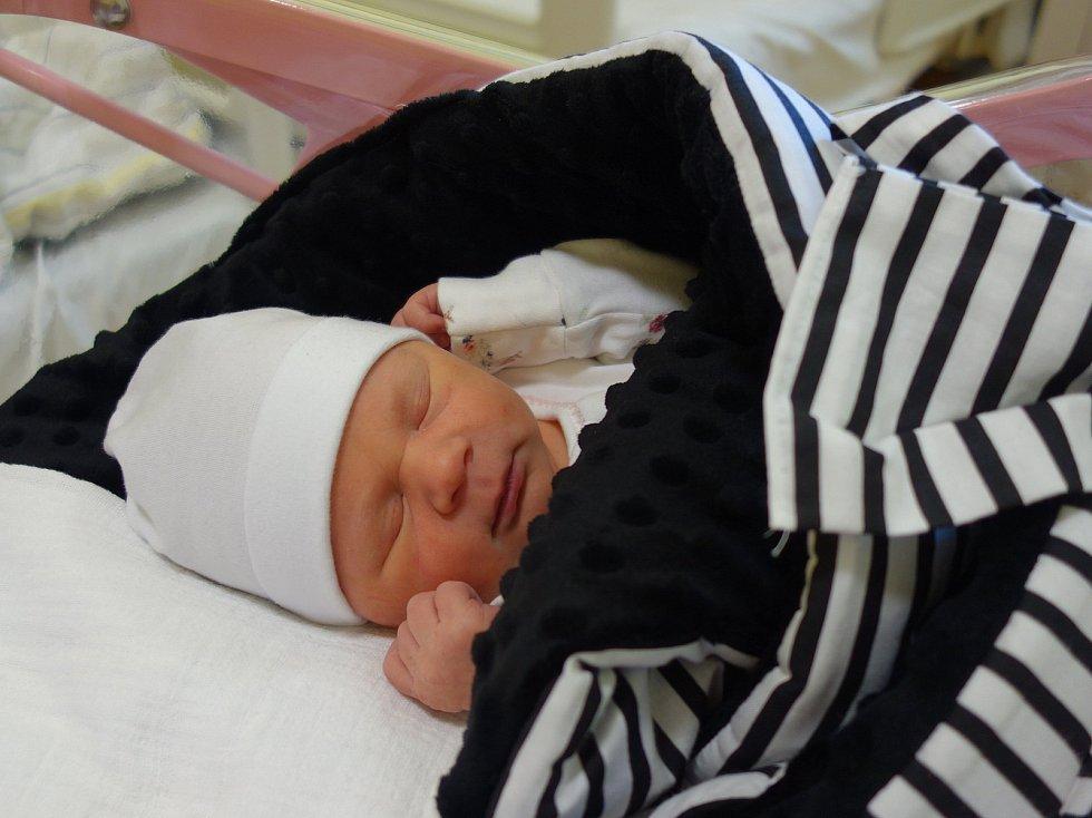 Dorota Pištěková se rodičům Karolíně a Tomáši Pištěkovým ze Sedlce-Prčice narodila 24. ledna 2020 v 8.44 hodin vážila 3350 gramů.