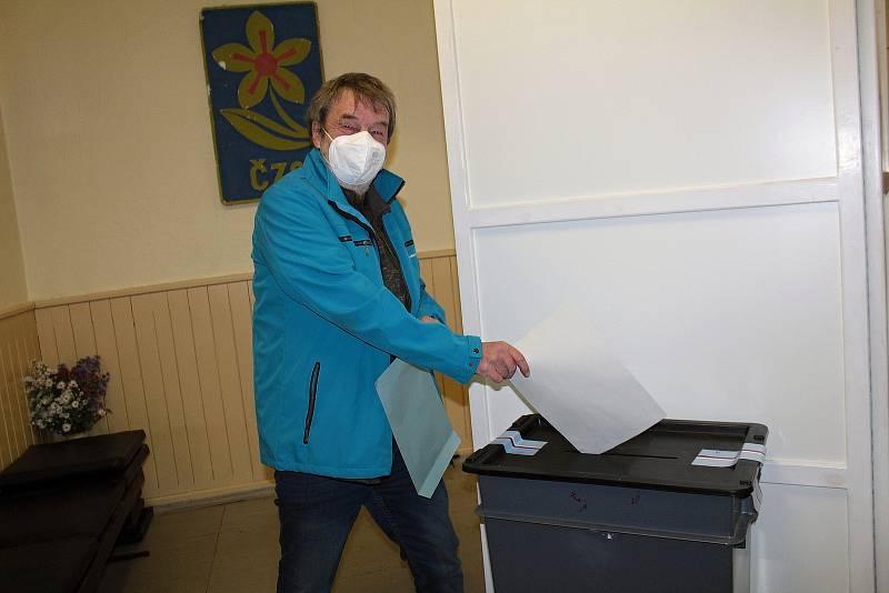 Parlamentní volby ve Václavicích.