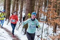 Zimní běh na Blaník.