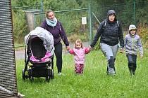 Z pochodu s veverkou Čiperkou na podporu hendikepovaných zvířat ve Vlašimi.