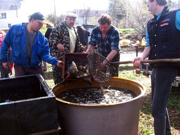 """Ryby z šebáňovického rybníčku poputují do sádek na """"vyčištění"""" a k zakoupení budou přivezení kapři."""