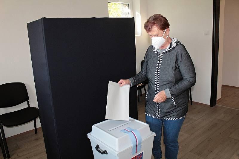 Parlamentní volby v Bukovanech.