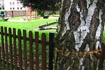 Vandal poškodil na Spořilově II čtyři stromy.