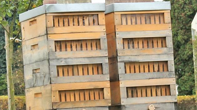 Ohnisko moru včelího plůdku se v nejkrajnějším případě likviduje spálením celého včelstva a všech zasažených úlů.