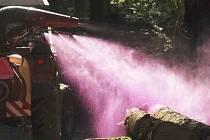 Ilustrační foto: Chemické ošetření padlých stromů