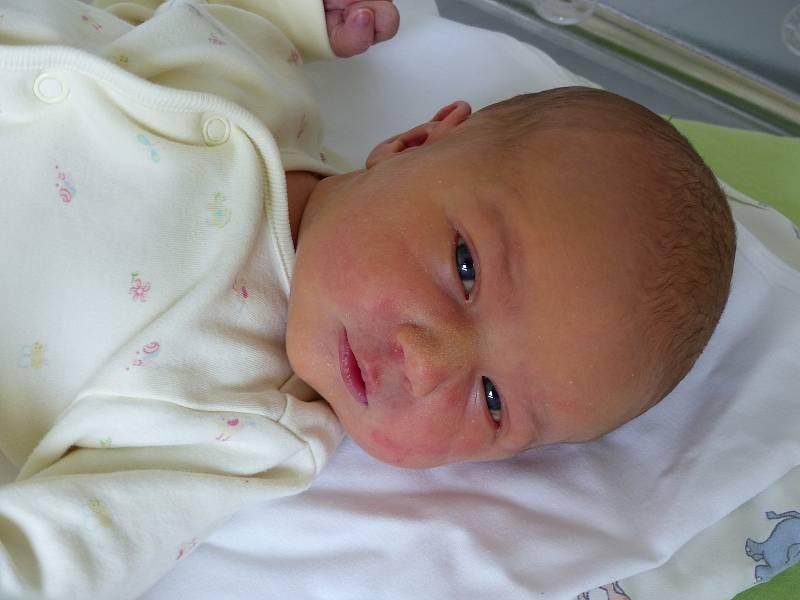 Stella Bartáková se narodila 19. července 2021 v kolínské porodnici, vážila 3620 g a měřila 50 cm. Do Městce Králové odjela s bráškou Kryštofem (4) a rodiči Veronikou a Vladimírem.