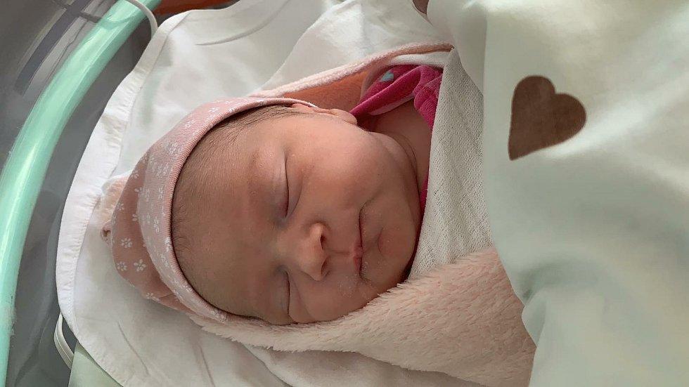 Elen Mojžíšová se poprvé na svět podívala 11. února 2021 v 5. 16 hodin v čáslavské porodnici. Vážila 3460 gramů a měřila 50 centimetrů. Doma v Čáslavi ji přivítali maminka Hana, tatínek Radek a osmiletá sestřička Emička.