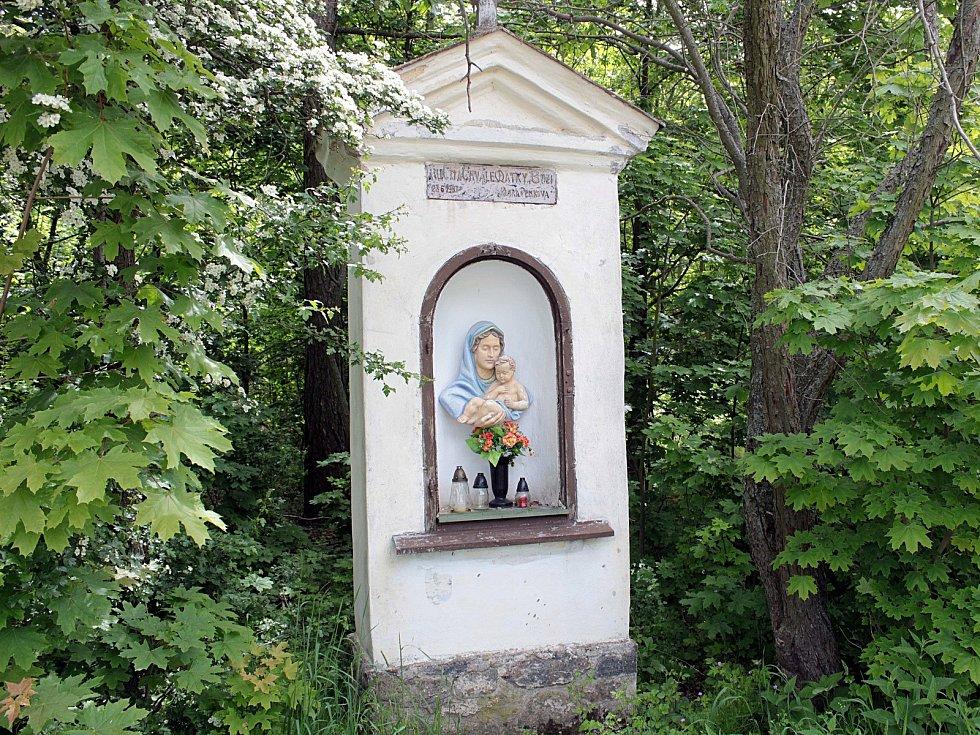 Z lokality na Polském vrchu nad Voticemi.