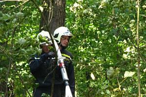 Likvidace požáru lesa u Voračic v úterý 4. srpna po 15. hodině.