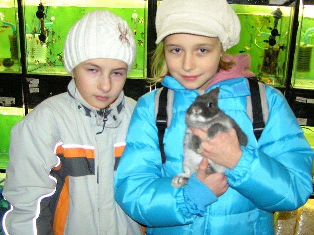 Děti rády dostávají pod stromeček zvířátka. Tereza Suchá a Eliška Větrovcová mají doma několik živých kamarádů a rády by přivítaly ještě králíčka