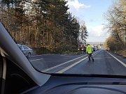 Dopravu na E55 zastavily nakloněné stromy.