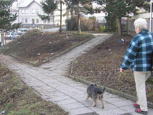 V rámci obnovy veřejné zeleně vykáceli dělníci nevzhledný porost ve stráni před nádražím i pod kulturním domem. Projekt za 8,8 miliónu, který se dotkne i mnoha dalších míst v obci, má být hotov do roku 2012.