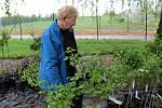 Ovocnou školku v Benešově vede zkušená Jiřina Padevětová.
