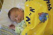 Sváhou 3370 g a mírou 49 cm se 1. května v21.18 narodil malý Jakub Dvořák. Ve Vlašimi, kam si jej jeho rodiče Hana Kačenová a Michal Dvořák odvezou, na něj čeká bratříček Michal (15 měsíců).