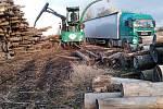 Štěpkování dřeva v Peceradech.