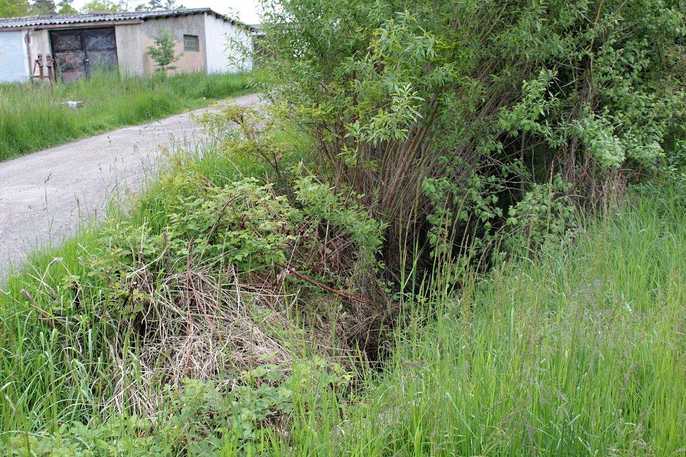 Udržet vodu v městské krajině pomůže v Týnci nad Sázavou výstavba tůněk na strouze mezi garážemi a ulicí K Zeleným vratům.