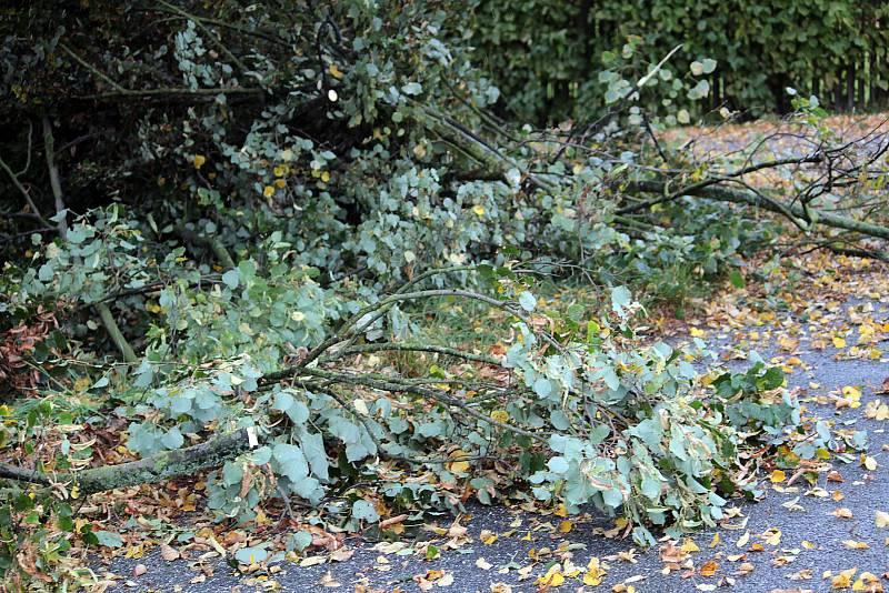Bezpečnostní řez stromů u silnice v Peceradech.
