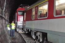 Příčinou nehody bylo vykolejení podvozku prvního vozu soupravy pro mezinárodní rychlík na srdcovce výhybky v prostředním tunelu.