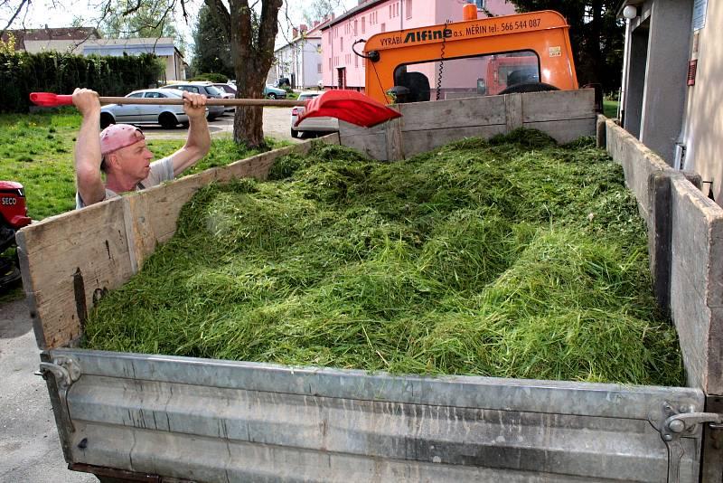 Údržba zeleně v Chrástu nad Sázavou - sídlišti.