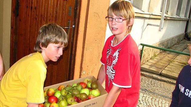 Páťáci ze ZŠ Karlov nasbírali pro Kazimíra 440 kilogramů ovoce a zeleniny.