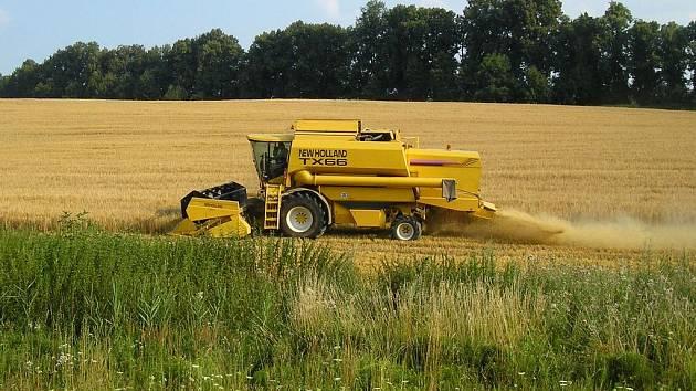 Ilustační foto: Seno, sláma a kukuřice skončí jako plyn