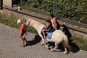 Krásné letní počasí provází sobotní program multikulturní přehlídky Týnecký střep.
