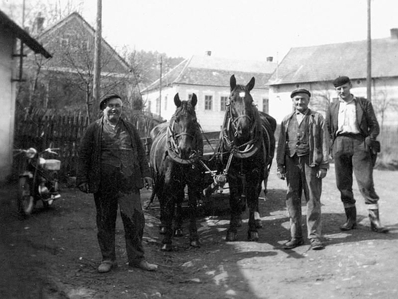 I když na přepravu lidí sloužily stále častěji stroje, většinou cenově dostupné motocykly, jak dokládá snímek z poloviny minulého století z centra Nahorub, koňská spřežení ještě  traktory zcela nenahradily.