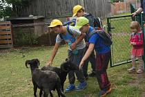 Děti v Záchranné stanice pro handicapovaná zvířata ve Vlašimi.