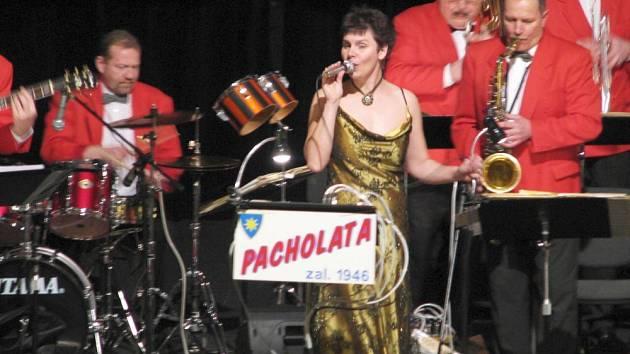 Pacholata byla první  kapela, která na náměstí pořádala Den hudby. Příští rok by minifestival měl být otevřený i dalším hudebním tělesům z Benešova