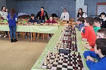 Vlašimské šachistky Nela Pýchová a Anežka Vlková porazily své soupeře v simultánce 19,5:1,5.