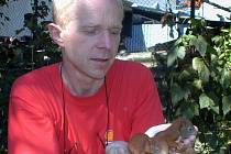 Na jaře můžeme často najít například mláďata veverek vypadlá z hnízda.