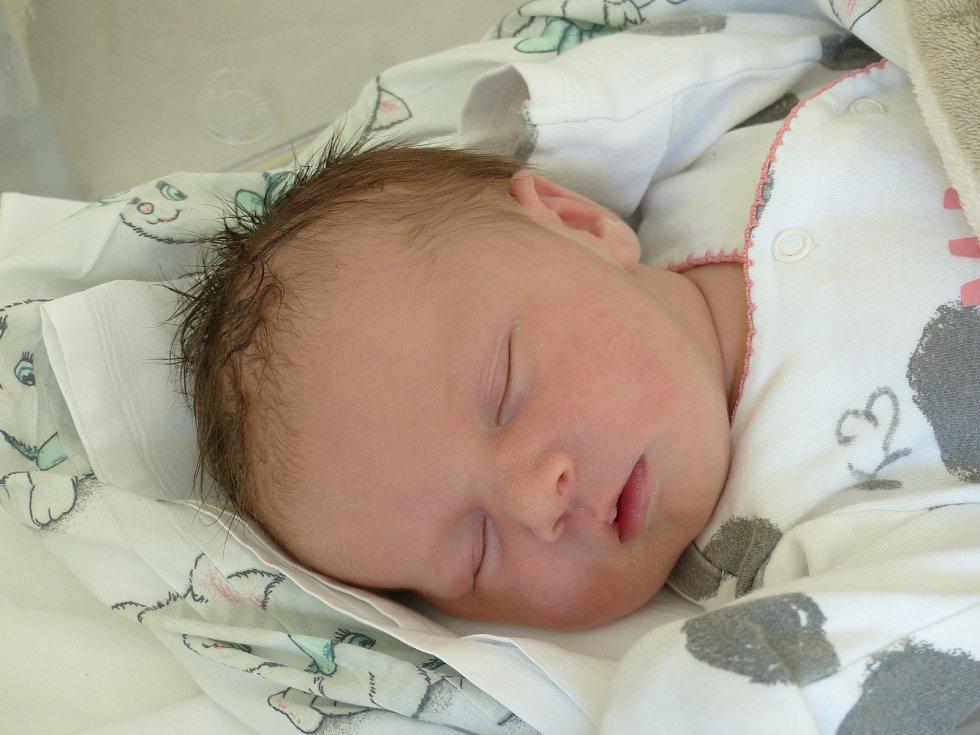 Eliška Arbelovská se narodila 19. dubna 2021 v kolínské porodnici, vážila 3320 g a měřila 47 cm. Ve Vlašimi ji přivítal bratr Daniel (26) a rodiče Renata a David.