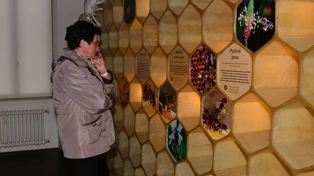 Pro návštěvníky Medové noci byla přichystaná jedinečná noční atmosféra stálé expozice, kosmetika s včelími produkty, ochutnávka medů a medoviny nebo míchaných nápojů s medem.