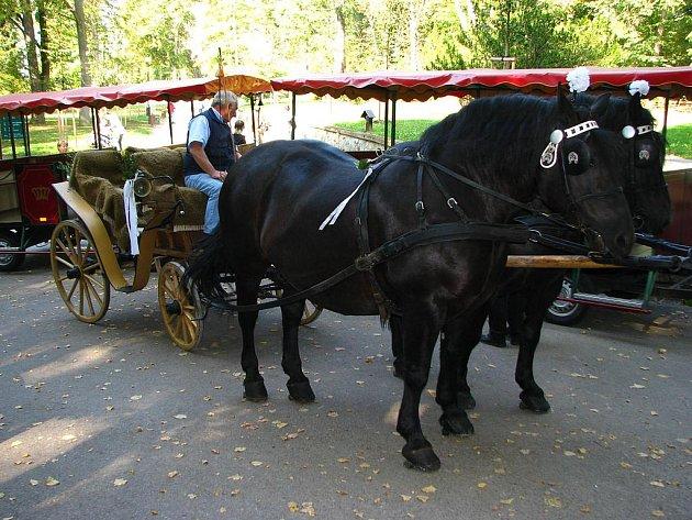 Po roční odmlce se do Konopiště vrátil kočár tažený koňmi.
