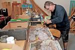 Geologická terapie v Centru sociálních služeb Tloskov. Jedním z těch, který nevynechá jedinou výpravu za kameny, je Jaromír.