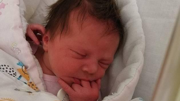 Stella Cardová se narodila 5. února 2021 v rakovnické nemocnici. Po porodu měřil 47 cm a vážil 3380 g. S maminkou Danielou Kubínovou, tatínkem Jiřím Cardou a bratrem Janem Václavem Cardou bude bydlet v Rudě.