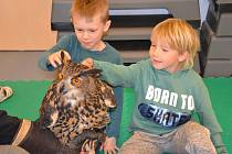 O tom, jak vypadá puštík, sova pálená, vzácný sýček nebo výr veliký se 5. března dozvěděly děti z mateřské školky MiniSvět.