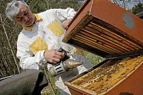 Včelaři se připravují na sezónu